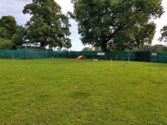 DB Training and Behaviour Enclosed Field