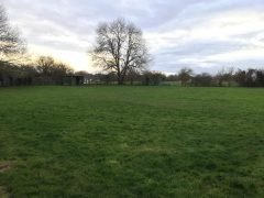 Field of Freedom - Chertsey