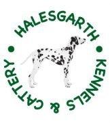 Halesgarth Kennels 4 acres fully enclosed field