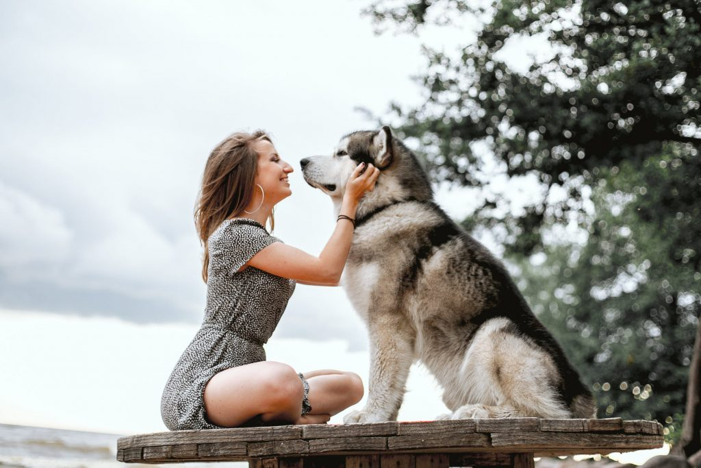How much does your dog love you?